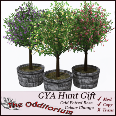 Odd_GYA_Ad